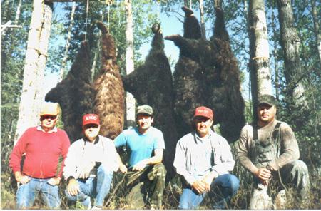 campbears1